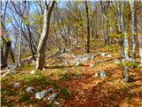 Kamnik ( 861m )strm sestop po spolzkem listju