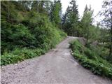 Žabnice / Camporosso in Valcanale - Kamniti lovec / Cima del Cacciatore