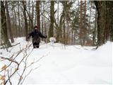 Debenji vrhčez napihan sneg