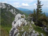 Bašelj - dom_na_kaliscu