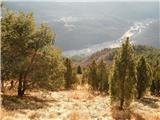 Alta via CAI Gemona (greben Lanež - Veliki Karman)pogled v dolino