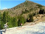 Goli vrh  1787 mnmGoli vrh v ozadju