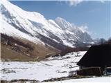 Krasji vrh na planini Zaprikraj že diši po pomladi
