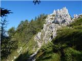 Spodnje Sleme - Obel kamen (Olševa)