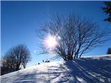 Kojca (1303m)tik pod vrhom