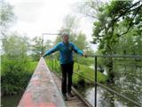 Debenji vrhna mostičku