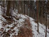 Podvin pri Polzeli - gora_oljka