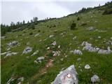 Pri Rupah - brda