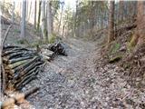 Prelesje - sivka