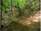 Vodiška planinalepa gozdna pot