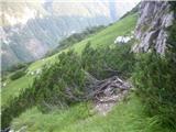 Rjavčki vrh ali Planinšca ( 1898m )pot