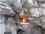 Javorca(Golte)nova pridobitev pri bivaku