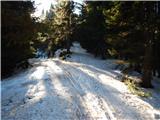 Koprivna (Kumer) - cofatijev_vrh