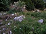 gozdec - Old mountain hut on Kanin