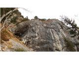 Javorca(Golte)votlina Mesarska lopa pod ostenjem Okenca