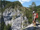 Golarjeva pečutrinek na grebenu Strevčeve peči