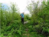 Ciganov vrh (Korinjski hrib)Na vrhu Ciganovega vrha (Korinjski hrib)