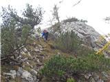 Ojstri vrh 1371msestop z Ojstrega vrha