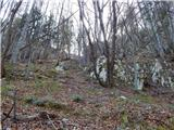 Poljana (Završnica) - Mali vrh nad Završnico