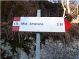 Amarianana izhodišču