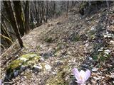 Bohinjska Bistrica (železniška postaja) - ajdovski_gradec