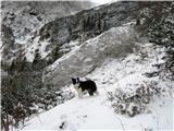 Kamniška Bistrica - Kamniško SedloPri Kamrici