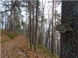 Debenji vrh2018.12.18.11 smer Pečar