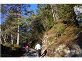 Šk.Loka-Križna gora-Planica-Čepulje-Špičasti hrib-sv.Mohor-Dražgoše