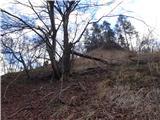 Žamboh (738 m)čez začetni strm travnat del