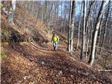 Žamboh (738 m)prijaznejša južna stran hriba