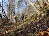 Žamboh (738 m)na gozdni poti na južni strani pod Špeglovcem