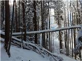 Goli vrh  1787 mnmdolgrede