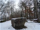Debenji vrh2019.01.22.26 kamen in palice