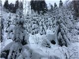 Menina planinaNovozapadli sneg