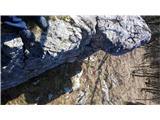 Brložen 851m nmvCentralna zajeda;) pod vrhom, nekak sem jo pa zlezel.