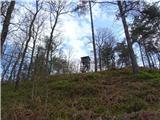 Debenji vrh2019.03.28.07 vrh hriba