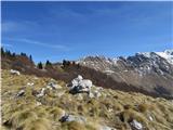 Krasji vrhpo poti mimo Kolujev je pogled na greben Krnčice stalnica