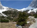 Kamniško sedlo- sončni vzhod2019.04.16.99 smreki in sedlo