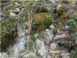 Kamniško sedlo- sončni vzhod2019.04.16.123 studenec
