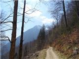 Kamniško sedlo- sončni vzhod2019.04.16.129 gozdna cesta na jermanci