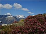 Velika planinav ozadju Kalški greben