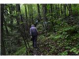Planina pri Sevnici-Sv. Križ-730mK ruševinam smo šli po strmi gozdni poti.