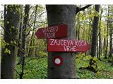 Čemšeniška planina - KrvavicaOd koče sva nadaljevala v smeri Zajčeve koče