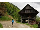Čemšeniška planina - KrvavicaKmetij je le malo tod okoli in nič kaj dostopne niso