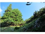 Begunjščica - V greben...ključni prehod...