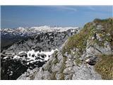 OgradiCvetoča pobočja avriklja pod vrhom Ogradov. Pogled proti Krnu.