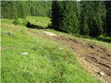 VernarBlatna gozdna pot do planine Konnjščice.