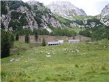 Viš-po poti Anita GoitanViška planina.