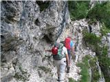Viš-po poti Anita GoitanKmalu nad planino srečamo prve jeklenice.
