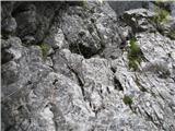 Slovenski slapovi vodotokov Gor ob jeklenicah.